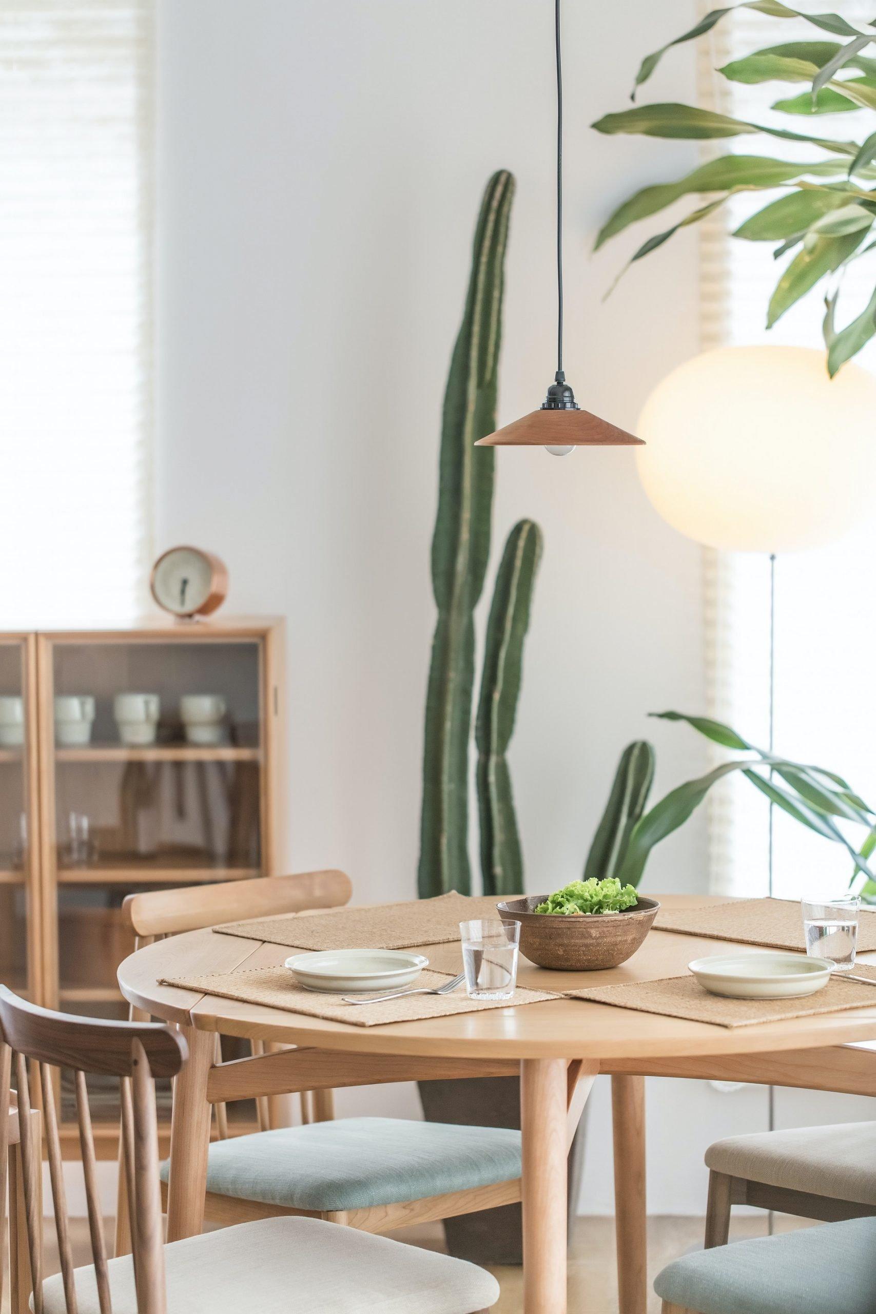 Green-cactus-close-dinning-table_NoLocation_1_1920x2880_etovilla